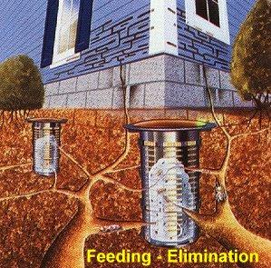The Exterra Termite Control Baiting System